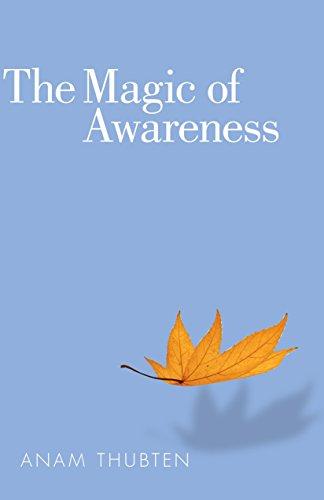 The Magic of Awareness: Thubten, Anam