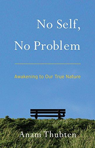 9781559394048: No Self, No Problem: Awakening to Our True Nature