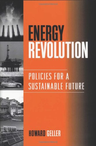 9781559639651: Energy Revolution: Policies For A Sustainable Future