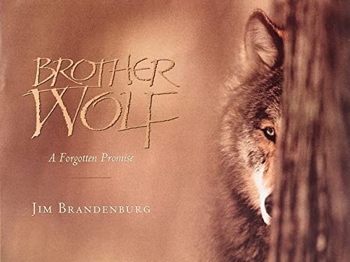 9781559712101: Brother Wolf: A Forgotten Promise