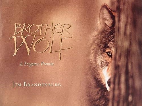 Brother Wolf: A Forgotten Promise: Jim Brandenburg