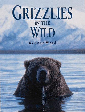 Grizzlies in the Wild: Ward, Kennan