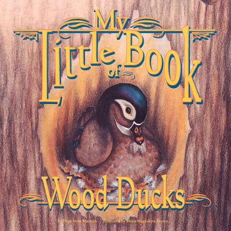 9781559714679: My Little Book of Wood Ducks