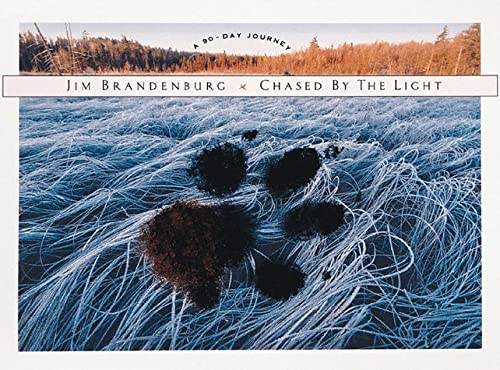 9781559716710: Chased by the Light: A 90-Day Journey