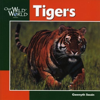 9781559717977: Tigers (Our Wild World)