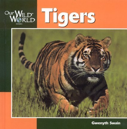 9781559718080: Tigers (Our Wild World)