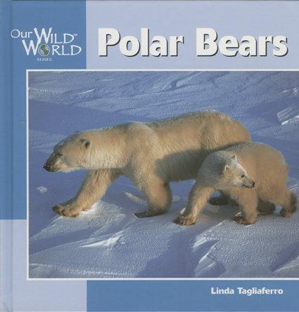 9781559718295: Polar Bears (Our Wild World)