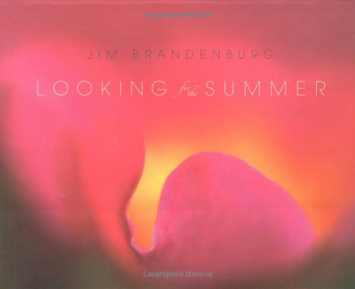 Looking for the Summer: Brandenburg, Jim