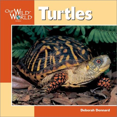 9781559718615: Turtles (Our Wild World)