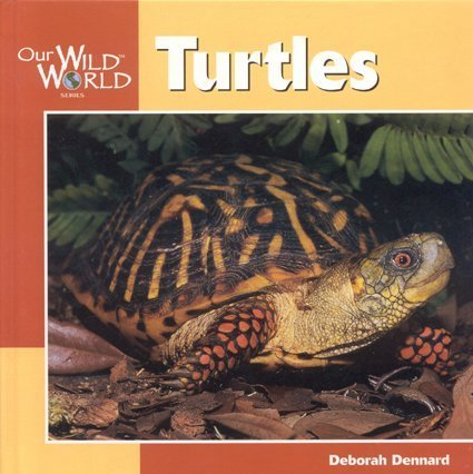 9781559718622: Turtles (Our Wild World)