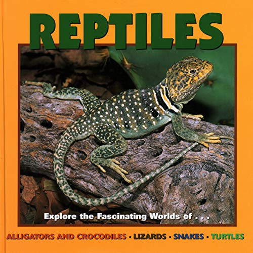 9781559718806: Reptiles (Our Wild World)