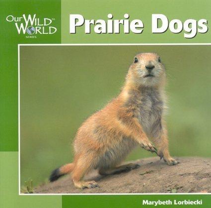 Prairie Dogs (Our Wild World): Lorbiecki, Marybeth