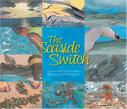 9781559719643: The Seaside Switch