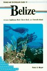 9781559920339: Diving and Snorkeling Guide to Belize: Includes Lighthouse Reef, Glover Reef, and Turneffe Island (Lonely Planet Diving & Snorkeling Guides)