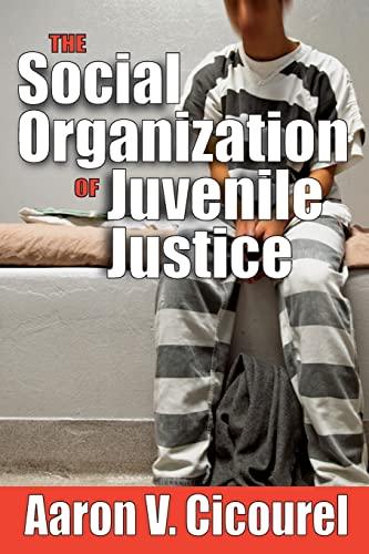 9781560007791: The Social Organization of Juvenile Justice