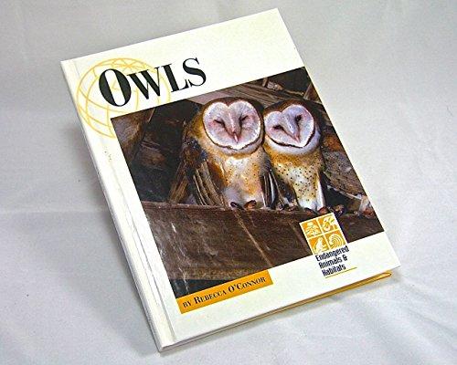 Owls (Endangered Animals and Habitats): Lucent Books (Creator),