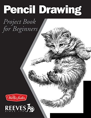 9781560107392: Pencil Drawing: Project book for beginners (WF /Reeves Getting Started)