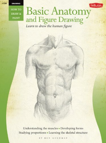 Beginner's Guide: Basic Anatomy and Figure Drawing (HT289) (How to Draw & Paint): Goldman,...