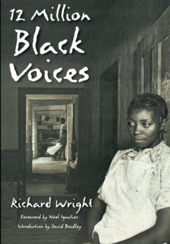 12 MILLION BLACK VOICES (reiss,tr)