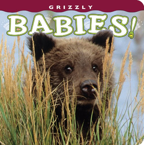 Grizzly Babies! (Babies! (Farcountry Press)): photography by Henry