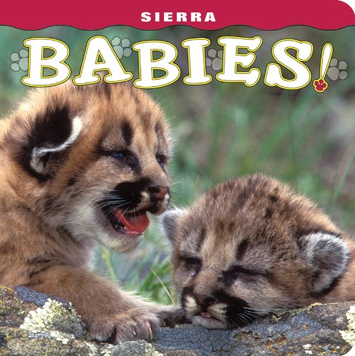Sierra Babies!: photography by Rozinski