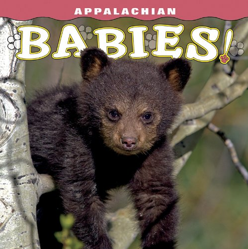 Appalachian Babies: photography by Don
