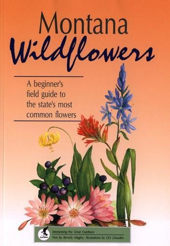Montana Wildflowers: Beverly Magley