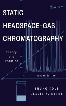9781560816966: Static Headspace-Gas Chromatography: Theory and Practice