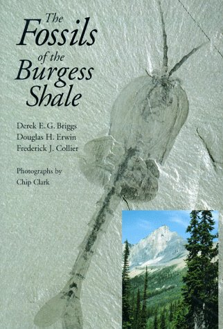 9781560986591: The Fossils of the Burgess Shale