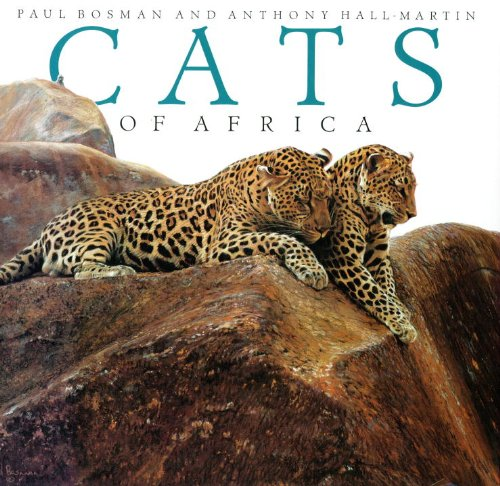 9781560987604: Cats of Africa
