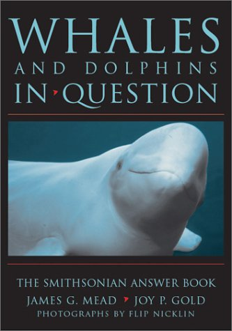 9781560989554: WHALES & DOLPHINS IN QUESTION