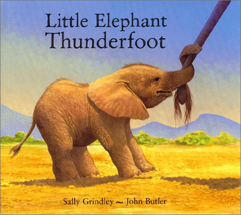 Little Elephant Thunderfoot: Grindley, Sally