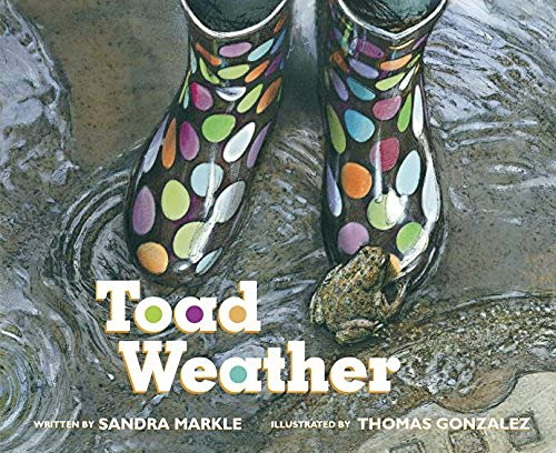 9781561458189: Toad Weather