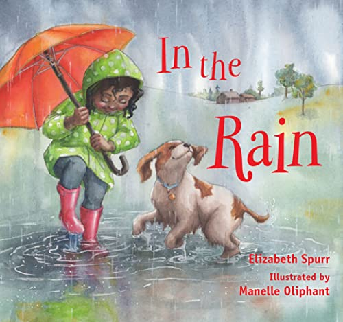 9781561458530: In the Rain