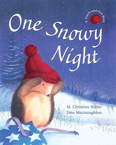 9781561484522: One Snowy Night