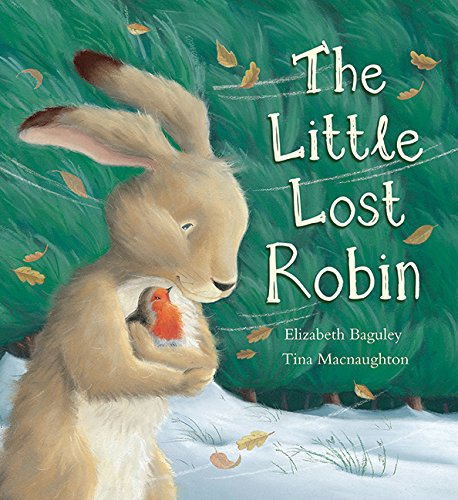9781561485901: Little Lost Robin