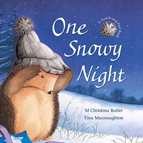 9781561485918: One Snowy Night