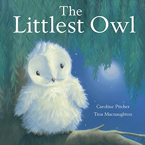 Littlest Owl: Caroline Pitcher
