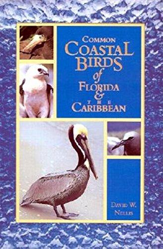 9781561641918: Common Coastal Birds of Florida & the Caribbean