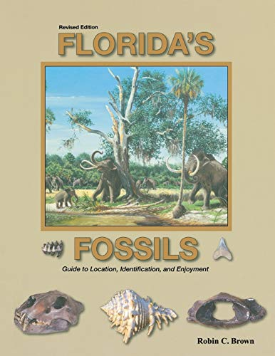 Florida's Fossils: Brown, Robin