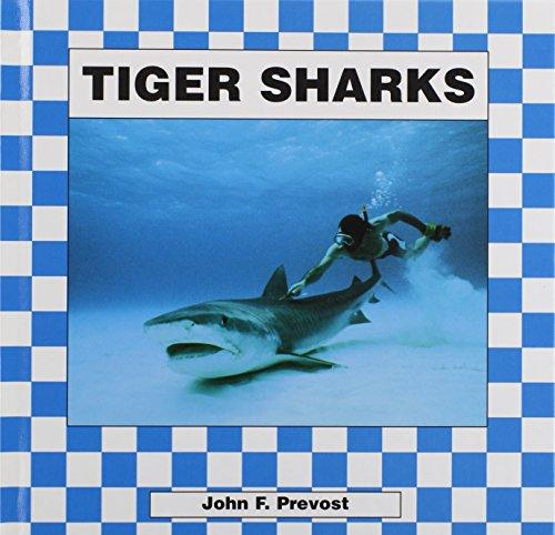 9781562394684: Tiger Sharks (Sharks (Abdo))