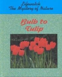 Bulb to Tulip (Lifewatch): Owen, Oliver S.