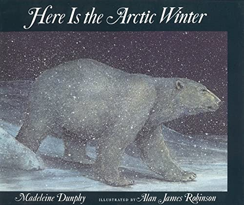 9781562823368: Here Is the Artic Winter: Here is the Arctic Winter