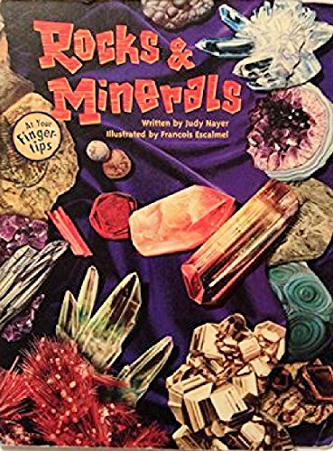 Rocks and Minerals (At Your Fingertips (McClanahan)): Judy Nayer; Illustrator-Grace