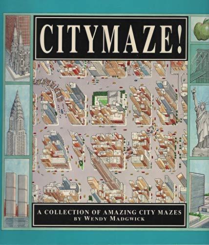 9781562948467: City Maze (Trd/Pb)