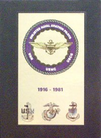 Enlisted Naval Aviation Pilots : 1916-1981: Turner Publishing Company