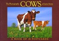 9781563137976: Cows