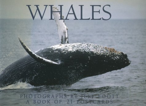 9781563138010: Whales Postcard Book