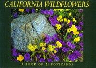 9781563138317: California Wildflowers