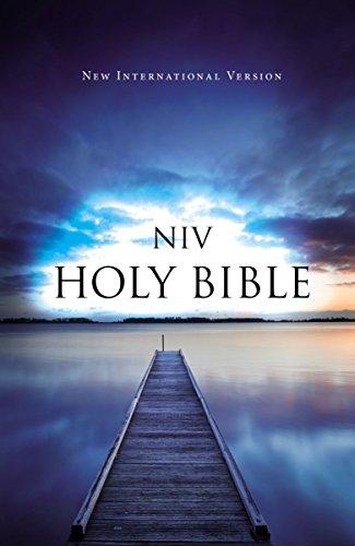 9781563201141: NIV, Outreach Bible, Paperback, Blue